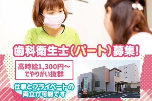 予防歯科処置などの歯科衛生士業務、パートのお仕事|松山市木屋町
