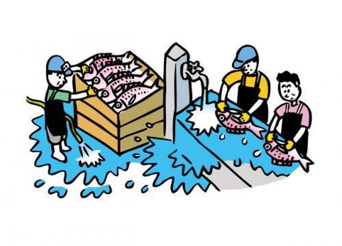 水産加工場でのお仕事です
