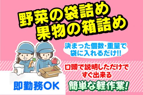 野菜の袋詰め・果実の箱詰め作業、バイト・パートの仕事|松山市堀江町