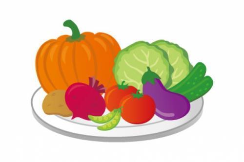 野菜・果実の選果作業・袋詰め、バイトのお仕事|松山市千舟町