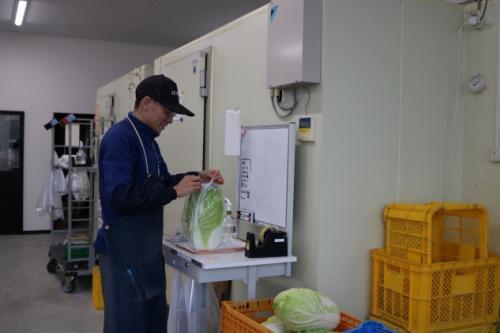 青果物の配送・仕分け、バイトのお仕事|松山市小坂