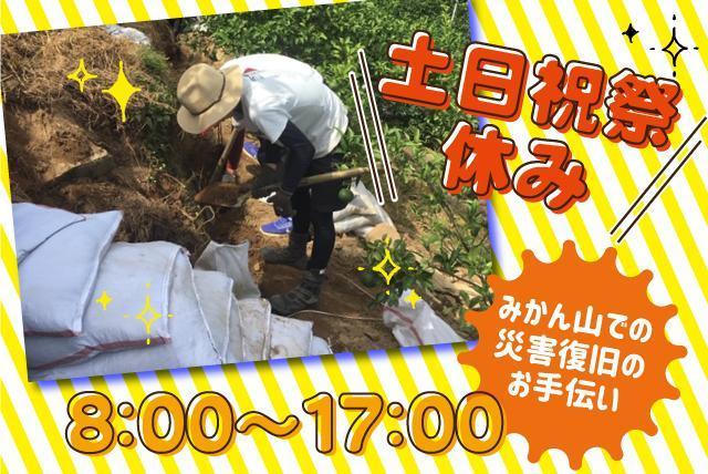 みかん山の災害復旧工事、単純作業のお手伝い、バイトのお仕事|宇和島市吉田町